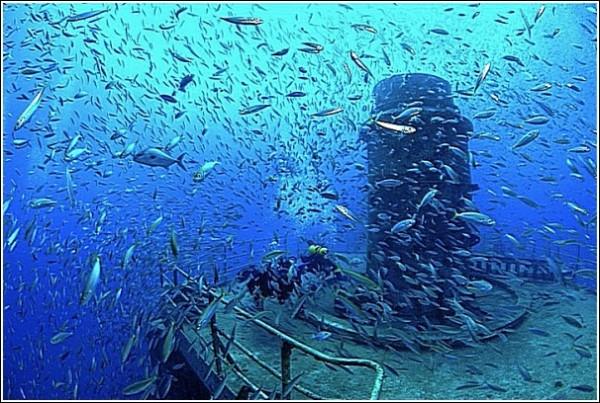 *На корабле и вокруг него кипела морская жизнь, но он все равно был мертв*