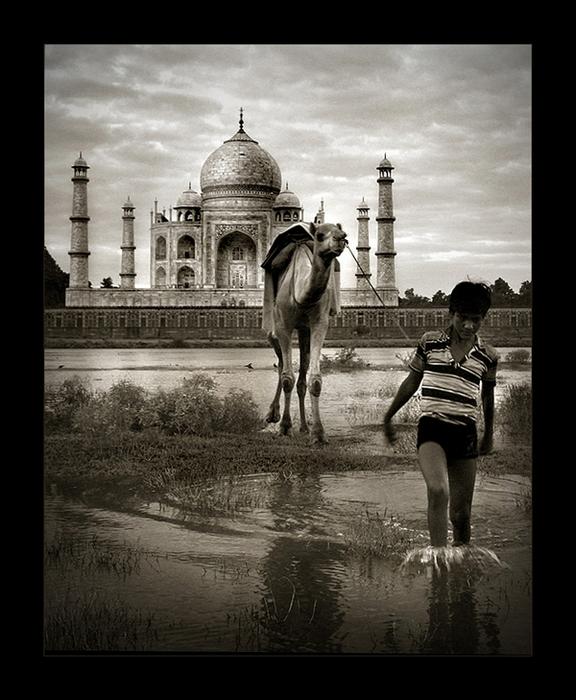 Жизнь проходит мимо: черно-белые снимки Тамера Аль-Тассана