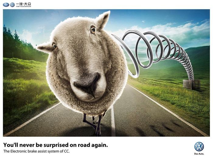Овца на трассе: креативная реклама «Фольксвагена»