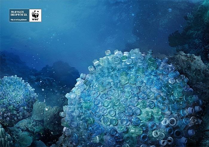 Бутылочный коралл-мозговик: зеленая реклама с морского дна