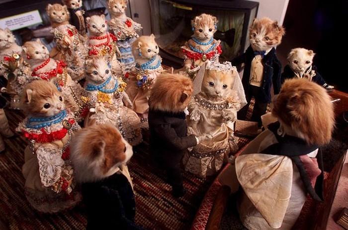 «Кошачья свадьба»: таксидермический музей Уолтера Поттера