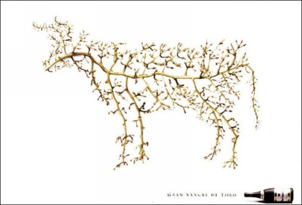 Забавная реклама вина: тот самый бык