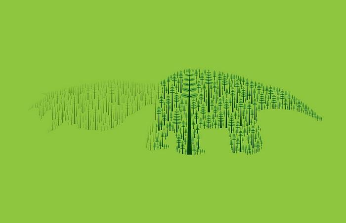 Тающие звери из редеющего леса: зеленая реклама из Бразилии