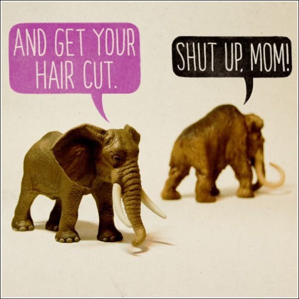 Юмористические картинки Аледа Льюиса: «Подстригись!» - «Отцепись!»