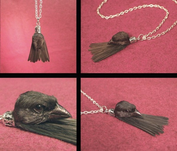 Оригинальные украшения: колье из мертвой птички