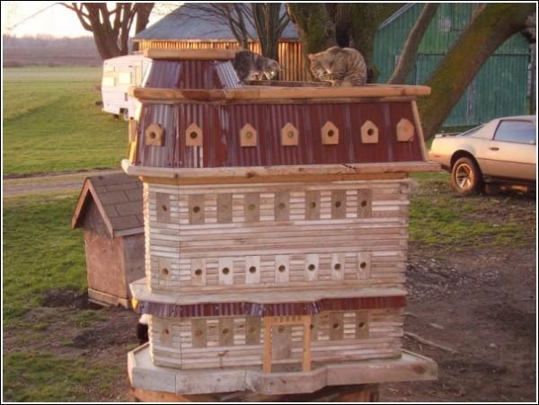 Домики Джона Лузера обживают не только птицы