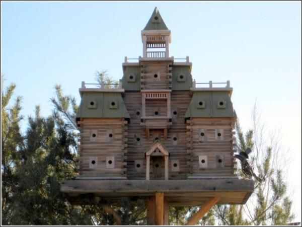 Авторские домики для птиц Джона Лузера