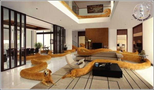 Собачьим духом пахнет: необычная реклама одеколона для животных
