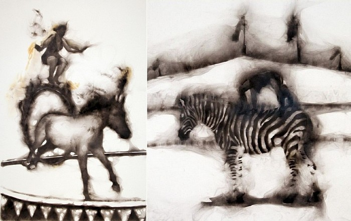 Цирковые лошади и зебры на туманной арене: фотокартины Роба Тарбелла, дорисованные дымом