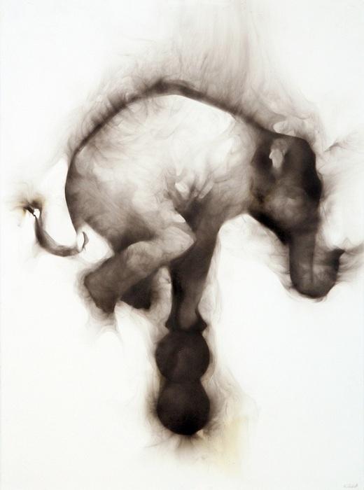 Цирковой слон: фотокартины Роба Тарбелла, дорисованные дымом