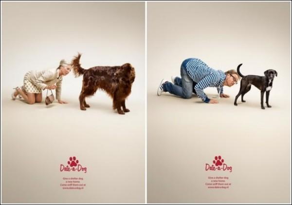 Обнюхайте пса: креативная реклама собачьего приюта
