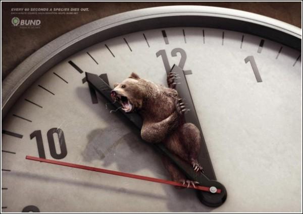 Минута до вымирания бурого медведя: шокирующая зеленая реклама