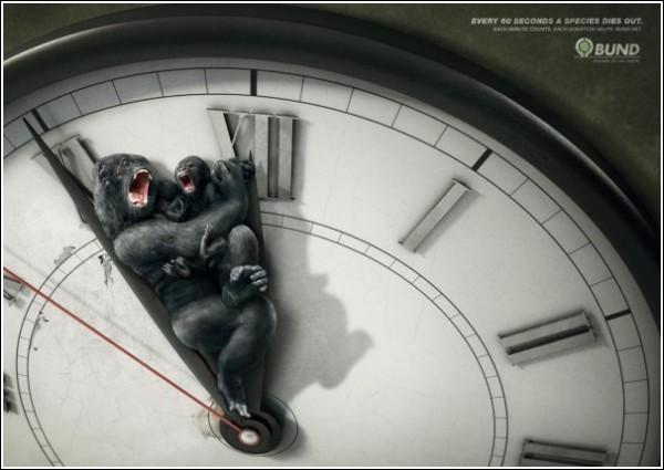 Минута до вымирания гориллы и ее детеныша: шокирующая зеленая реклама