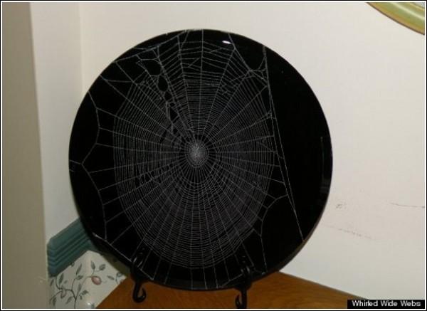 Необычные поделки Эмиля Фиоре в соавторстве с пауками