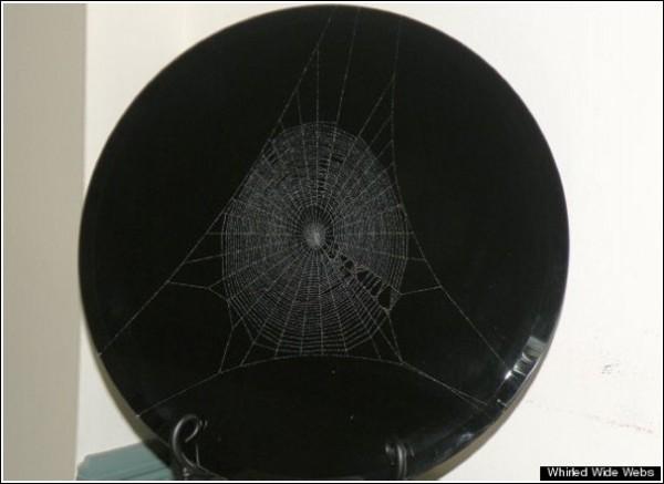 Арт-паутина: 12 тысяч необычных поделок за 25 лет творчества