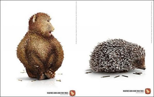 Прячьте спички от ежей: оригинальные противопожарные плакаты