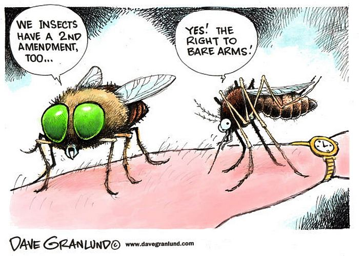 У насекомых тоже есть 2-я поправка к конституции - право на голые руки