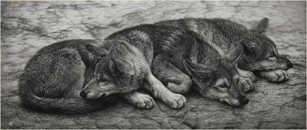 Волк = чужой. С мифологией не поспоришь