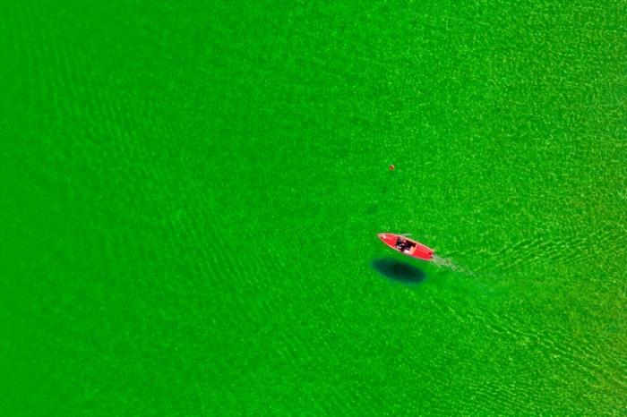 Красный катер в зеленой воде