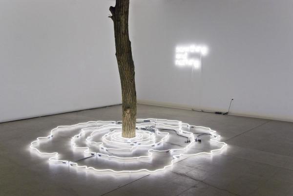 Дерево, стоящее в центре расходящихся кругов, - символ мирового древа, погруженного в реку времен