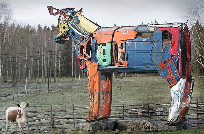 Настоящие коровы недоумевают