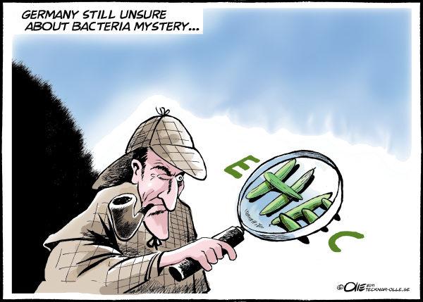 *Германия все еще не раскрыла тайну бактерий...*