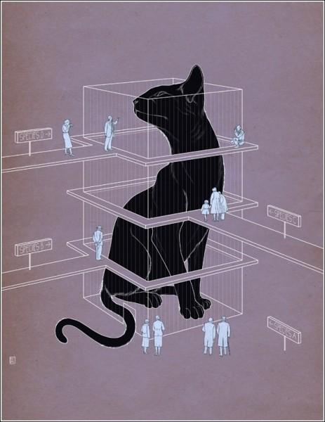Цветные иллюстрации Ричарда Уилкинсона: кошка Шредингера