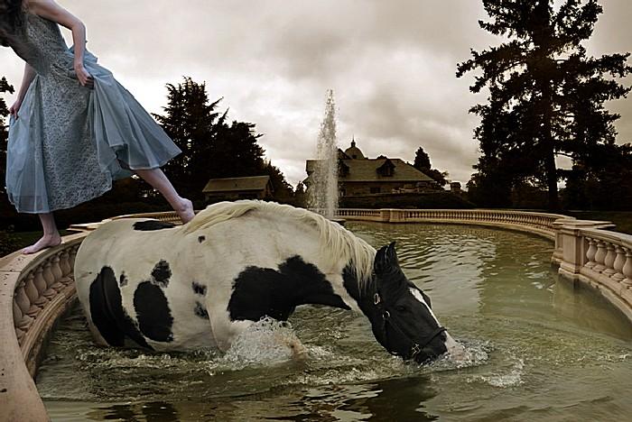 Лошадь в фонтане: арт-фотографии Тома Чемберса