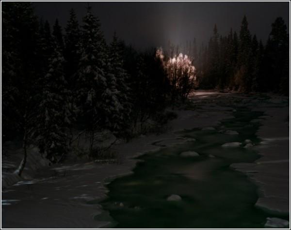 Детство Винсента Скоглунда прошло в этих краях, среди лесов