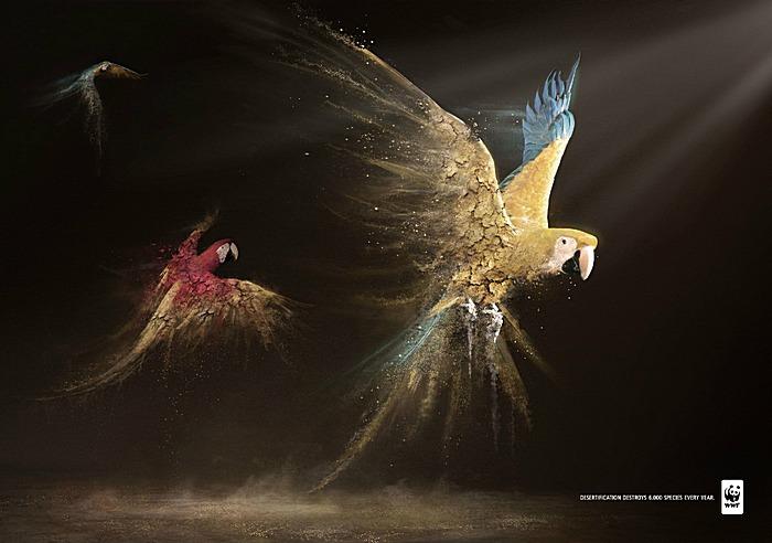 Рассыпающаяся стайка попугаев. Проблема опустынивания в зеленой рекламе