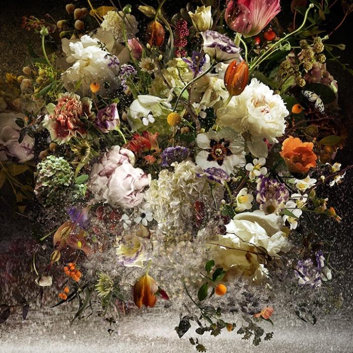 Фотокомпозиции из цветов и птичек