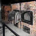 Музей Освенцима впервые покажет часть экспозиции в Европе и США
