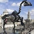 На четвертом пьедестале Трафальгарской площади установлен скелет лошади