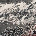 В Гонконге выбросили свиток стоимостью 3,7 миллиона долларов