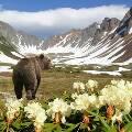 Государственное Агентство по туризму Камчатки компенсирует 3000 рублей каждому туристу, приехавшему в регион