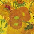 Впервые за 60 лет две картины Ван Гога серии «Подсолнухи» выставлены вместе