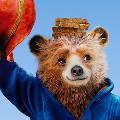 Минкультуры сдвинуло премьеру фильма про мишку Паддингтона на 20 января после жалоб кинотеатров Медведеву