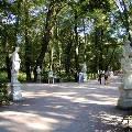 Летний сад в Петербурге открылся после реставрации