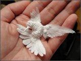 Воздушные птички, не умеющие летать