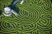 ������ ������������ �������: ����� ������� � ���� ������� �������� Longleat Hedge
