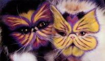 Catpainting: �������, ������������ �� ��� ����� ������