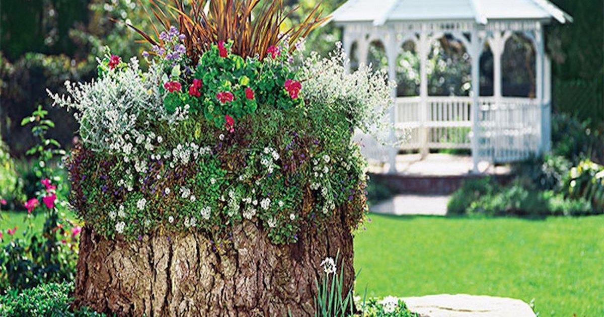 Поделки из пней и коряг для сада своими руками