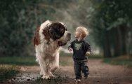 Когда собаки большие, а дети маленькие: 30 фотографий детишек и их четвероногих друзей