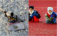 10 фотографий о людях, которые зарабатывают на жизнь весьма необычным способом