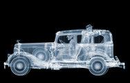 Насквозь, или рентгеновский взгляд на мир: потрясающие снимки Ника Визи