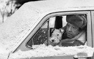 В кадре советские знаменитости: 15 неожиданных снимков легендарного фотографа Льва Шерстенникова